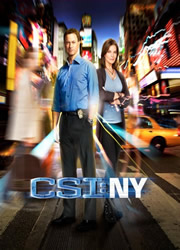 CSI NY 9x24 Sub Español Online