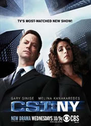 CSI NY 9x10 Sub Español Online